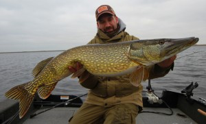 Great Size Pike :)